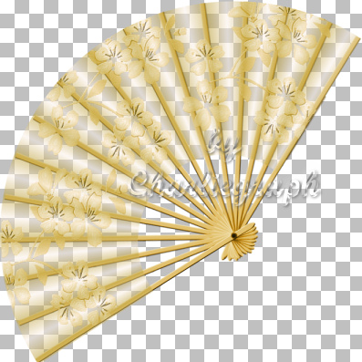 http://www.charlieonline.it/MyScrapingBook/Fans/ch-fantransparent5.jpg