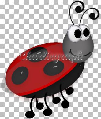 ch-ladybug5